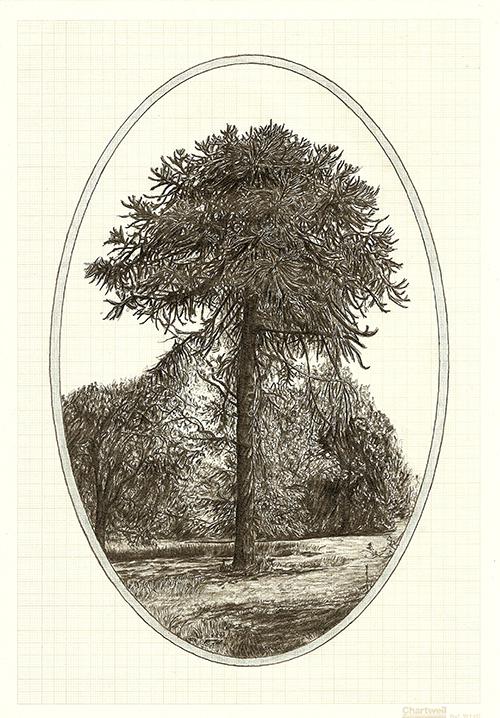 Family Tree VII, graphite on graph paper, 29.7 x 21cm, 2013