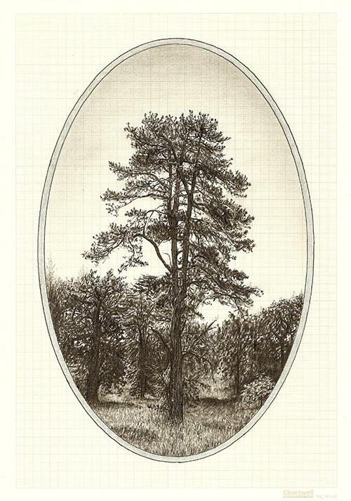 Family Tree X, graphite on graph paper, 29.7 x 21cm, 2013