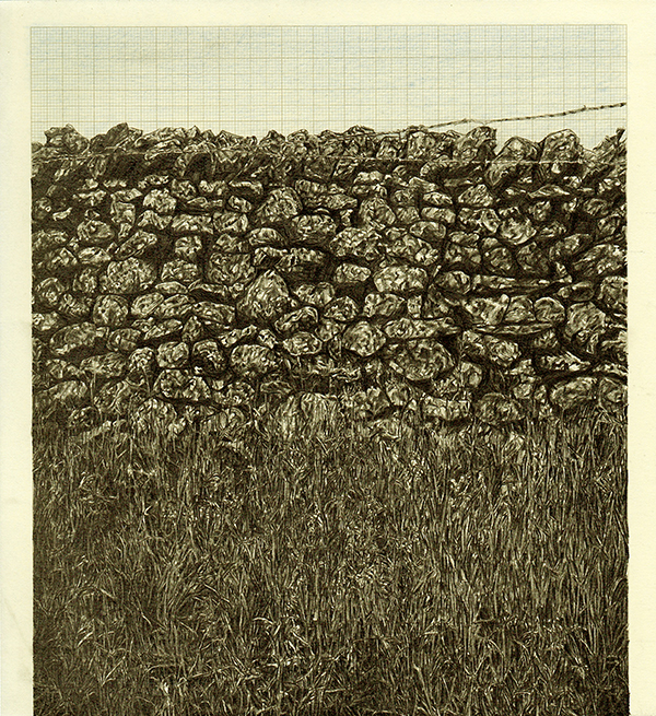 The Grass Isn't Always Greener, graphite and coloured pencil on graph paper, 22.9cm x 21cm, 2014
