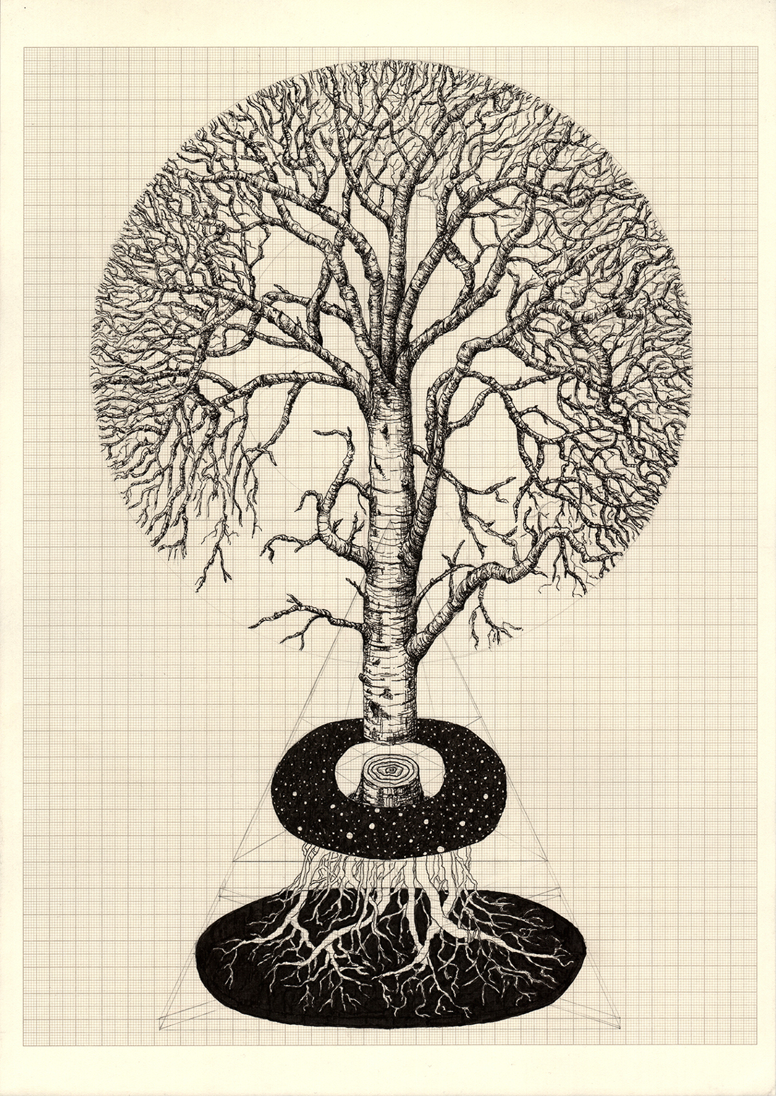 The World Tree, graphite and indian ink on graph paper, 42cm x 29.7cm, 2015